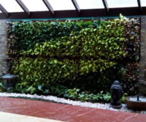 Natura 's Green Wall system