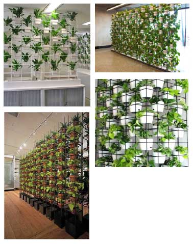 green-wall-metal-frame-with-pots