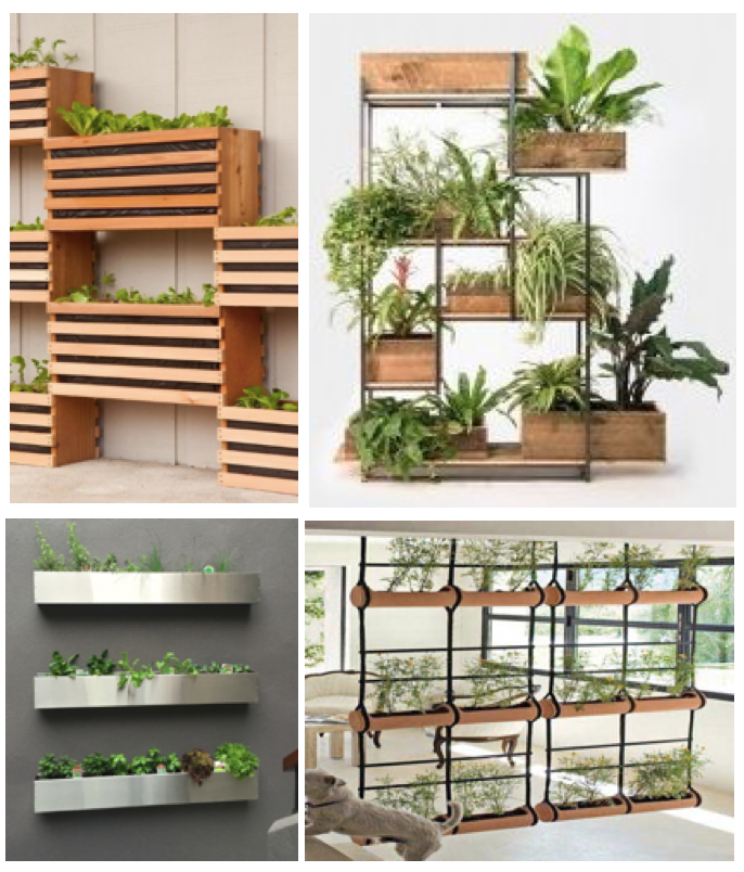 Vertically placed plants in custom structures