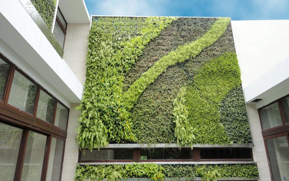 natura-india-green-walls