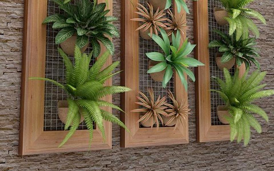 natura-india-plant-frames