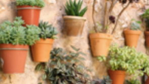 natura-india-wall-mounted-pots